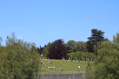 La Hulpe - Prenez l air (5) (Patrick Williot) Tags: la air fete chateau brabant domaine cerfs volants wallon solvay hulpe
