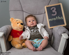 Three Months- May 4, 2016 (zachary.locks) Tags: bear old baby cute up jack happy three big chair infant sitting adorable fast son pooh growing months cy365 zlocks