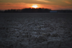 Dirt under my feet (MilaMai) Tags: sunset sky sun black blur field clouds barn rural suomi finland underground landscape outdoors golden countryside spring focus melting dof bokeh dry dirt finnish depth atmospheric maisema sere lowangle selectivefocus lowperspective 2016 dryfield milamai maijuleena