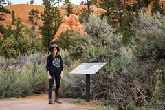 IMG_3816[1] (Eric.Burniche) Tags: travel nature utah desert outdoor brycecanyon brycecanyonnationalpark roadtr