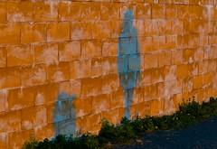 Shadow Play (Edinburgh Photography) Tags: urban woman dog abstract nikon edinburgh shadows harbour photojournalism newhaven d7000