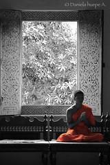 2 (d.huepe) Tags: world people orange canon thailand temple asia peace gente religion pray paz tailandia mundo templo budhist budhism oracion rezar naranjo armonia armony budistas ti1 canoneosrebelt1i