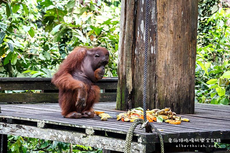馬來西亞沙巴景點.speilok