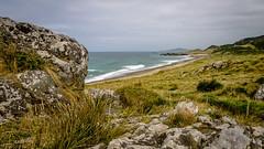 Howell's Point/Taramea (Kathrin & Stefan) Tags: ocean newzealand sky cloud beach reed nature grass rock bay outdoor wave lookout southisland tasmansea riverton foveauxstrait oraka colacbay raka