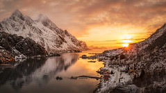 Norway (Mark McLeod 80) Tags: winter mountains norway lofoten fjords lofotenislands unstad markmcleod markmcleodphotography