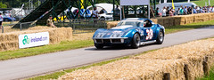 DSC_4398 (D Bloor) Tags: cars speed supercars cholmondley pageantofpower cholmondleypageantofpower cholmondeleypowerandspeed
