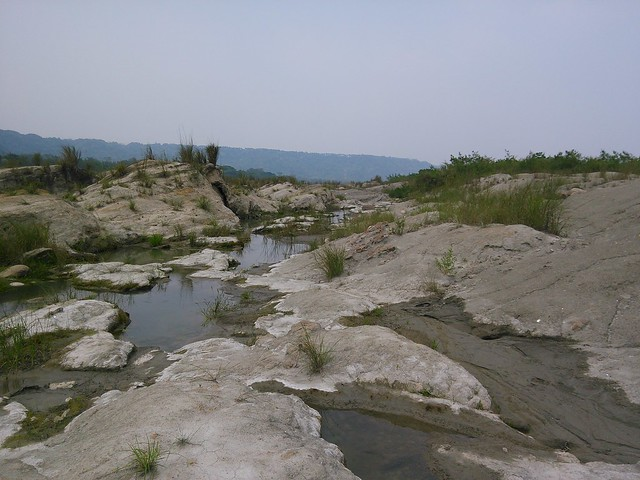 大漢溪化石09