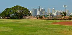 Skyline: Kapoalono Field (jcc55883) Tags: hawaii nikon oahu honolulu 12thavenue nikond3200 kaimuki yabbadabbadoo d3200 kilaueaavenue kapoalonofield