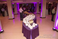 WedBash! 2015 (weddingguidechicago) Tags: pinstripes chicagoweddings weddingguidechicago weedbash