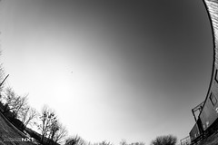 Just one bird (Daniel Kulinski) Tags: trees sky bw sun white black photography daylight europe day bright image daniel creative picture samsung poland railway fisheye clear reality 1977 wagons photograhy distort nx pruszkw mazowieckie pruszkow nx1 kulinski samsungnx samsungimaging danielkulinski samsungnx10mmf35 samsungnx1 cameranx1 cameranx samsung10mm samsung10mmf35 nx10mm