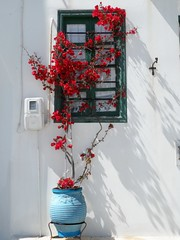 058- Amorgos 2014 SAM_3787 [1280x768] (Χατζής Κώστας) Tags: sea greece cyclades amorgos ελλαδα κυκλάδεσ αμοργόσ ηλιοσ