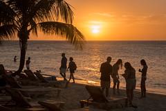 F1609E7 - Roatan Sunset at Inf Bay Beach (Bob f1.4) Tags: sunset sky people orange tree bay walk infinity watch honduras palm resort roatan