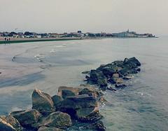 Il mare d'inverno (Cristina Birri) Tags: winter sea verde green mare inverno grado friuli gorizia scogli alghe friuliveneziagiulia