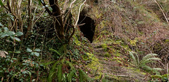 Another little cave south of Luccombe Chine (BOB@ wootton) Tags: isleofwight cave isle carvings wight chine iow luccombe