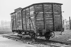 The last wagon (J.Salmoral) Tags: camp vacation snow wagon concentration konzentrationslager nieve poland polska polen campo neige auschwitz polonia birkenau concentracion pologne oswiecim exterminio vagon  polsko aushwitz owicim brzezinka poloni lengyelorszg polnia poljska polonya   canonef24105f4lisusm