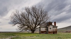 School & Tree (joeqc) Tags: oregon school or tree lone canon 6d ef1740f4l lonely forgotten old schoolhouse