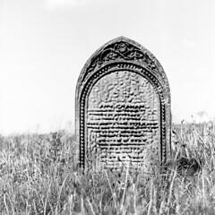 Jewish Cemetery at Spion Kop (aiherzen) Tags: 120 6x6 mamiya film cemetery iso100 fuji roll neopan  acros c33 hartlepool 105mm mamiyasekor spionkop xtolstock