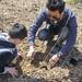 Plantation d'arbre entre un père et son fils