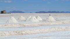 - 2016-05-06 at 19-47-02 + salt flats