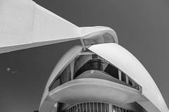 palau de les arts reina sofa - valencia - spain (kusi@flickr) Tags: travel blackandwhite valencia les de reina spain europe fuji sofa arts espana architektur palau spanien costablanca palaudelesartsreinasofa wclx100 x100t