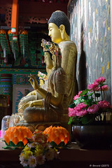 Jeju - Yakcheonsa (misterblue66) Tags: temple buddha korea bouddha jeju budda buda core yakcheonsa
