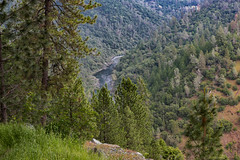 RHM_1652-1388.jpg (RHMImages) Tags: california trees landscape us nikon unitedstates under auburn foresthill d810