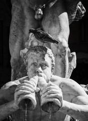 Blow the horns (Frank van Dam Utrecht) Tags: rome blow triton fontanadelmoro