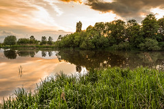 DSC_8306 (silviu_z) Tags: tree green nature water grass clouds river landscape nikon romania silviu mures zlot d810 1635vr