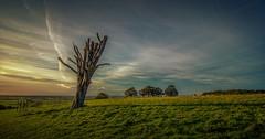 Dyrham Park (seanfarr) Tags: park uk england clouds canon national trust dyrham