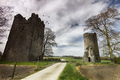two ruins (BarryKelly) Tags: ireland tree bird tower castle church fence path ruin burn carlow burnchurch