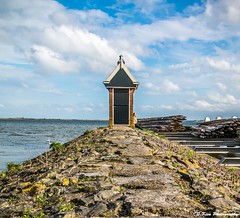 IMG_1995 (s.kissphotography) Tags: nature port berge oiseau homme volendam hollande skissphotography