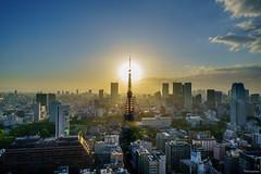 Tokyo Sunset (shiroooooooo) Tags: city sunset urban japan skyline landscape tokyo cityscape tokyotower