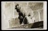 f_changito (ricksoloway) Tags: oldphotos photohistory foundphotos antiquephotos rppc phototrouvee realphotopostcards rppcs