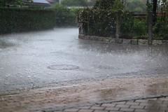 regnerischer Sonntag (TwoRedStripes) Tags: rain sunday may mai sonntag regen 2016 tiefenschrfe unschrfe eos6d