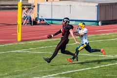 GFL-2016-Panther-9936.jpg (sgh-fotos) Tags: football nfl bowl german panthers sack dsseldorf touchdown defence invaders hildesheim dline fumble gfl amarican quaterback oline interception ofence