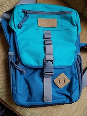 """173/366 """"Deliver Me From LL Bean"""" (zodia81) Tags: project bag teal 365 carry llbean"""