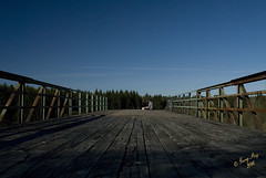 En vergiven brohalva #14-5 (George The Photographer) Tags: abandoned george mtb bro rost paus cykel selfie bl betong solberga blhimmel vergiven vgrcke vningsomrde ing1 almns militromrde steij dokumentera brohalva
