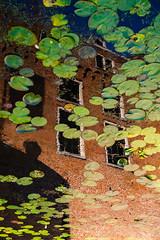 Reversed reflection of Kasteel Woerden (PaulHoo) Tags: city urban holland color reflection building window water netherlands silhouette architecture contrast mirror evening nikon brood woerden 2016 d700