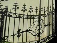 shadow (Hayashina) Tags: shadow italy fence torino turin hff