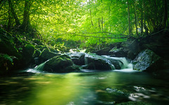 Magical Feelings (mr.martino) Tags: longexposure light green fall nature water forest landscape waterfall woods colours