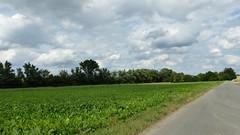 Bei Bechtolsheim
