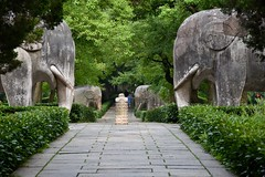 The Sacred Way (jacques_teller) Tags: china sculpture heritage stone way site nikon unesco mausoleum sacred imperial nanjing ming tombs dynasty worldheritage purplemountain d7200