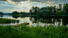Beyond the reeds (TanzPanorama) Tags: travel sunset summer vacation sky lake reflection green nature water zeiss reeds landscape flickr sony scenic lakeside serene waterscape fe1635mmf4zaoss variotessartfe1635mmf4zaoss sonya7ii sonyilce7m2 tanzpanorama