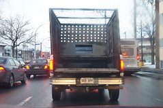 I'm Behind This.. (caribb) Tags: city winter urban canada truck driving montral quebec montreal pickup qubec flimsy 2015 anjou