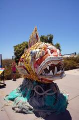2012-06-18 06-30 Kalifornien, Big Sur bis San Diego 157 Chula Vista Aquarium