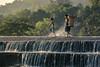 SAM_5801b (yaman ibrahim) Tags: boys water kids dam sabahan kadazandusun