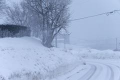 _DSC0149 (MirrorlessvsD-SLR2) Tags: blue cloud white cold japan zeiss dark hokkaido wind sony snowstorm windy e alpha abashiri cs6 acr871