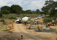 Roadwork (jaffles) Tags: holiday nature southafrica wildlife natur olympus safari np sdafrika kruger krger