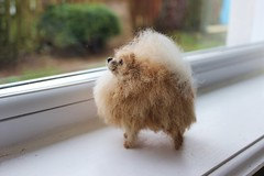 pomeranian needle felted (adore62) Tags: sculpture etsy pomeranian toydog needlefelted needlefelteddog feltedfido etsyfeltedfido brightonpomeranian