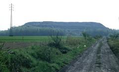 Anderlues, lijn 110 met terril (Ahrend01) Tags: 110 natuur mijn lijn steenberg terril toerisme wandelroute spoorlijn anderlues opgeborken